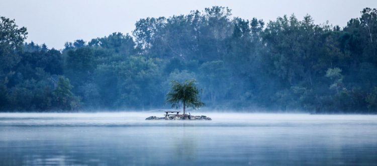 misty waterway scene