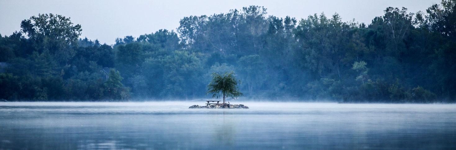 misty waterway scene
